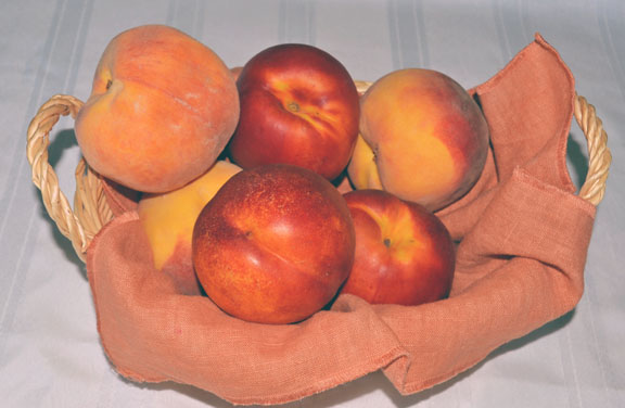 fresh peaches and nectarines