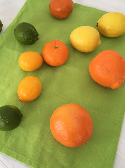 sunny citrus for marmalade