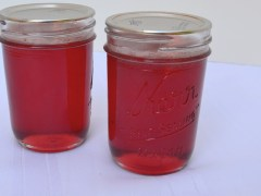 Homemade Peach-Plum Jelly