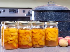 Is Your Home Canning Process Safe?
