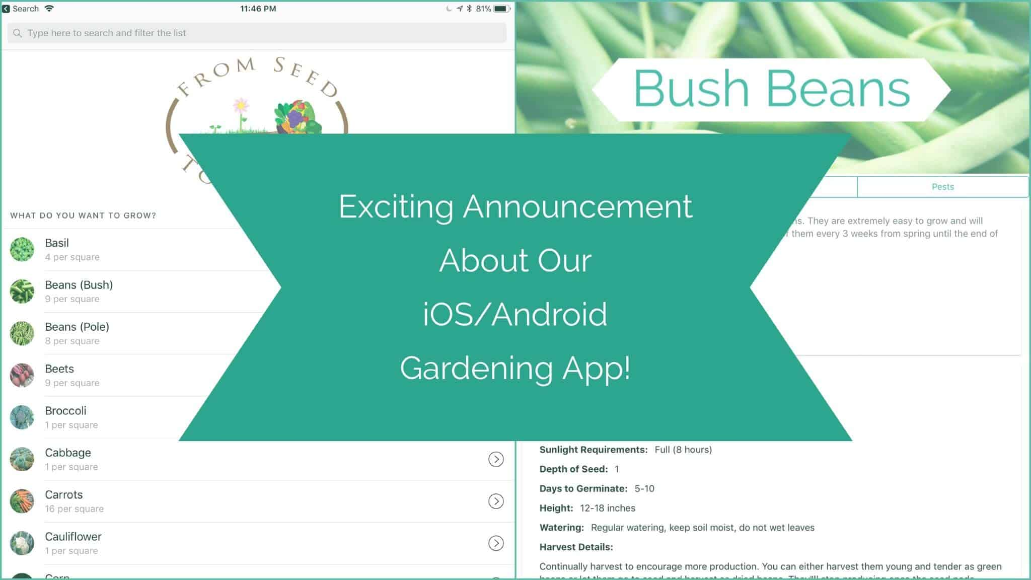 Exciting Announcement About Our Upcoming iOS/Android Mobile App!
