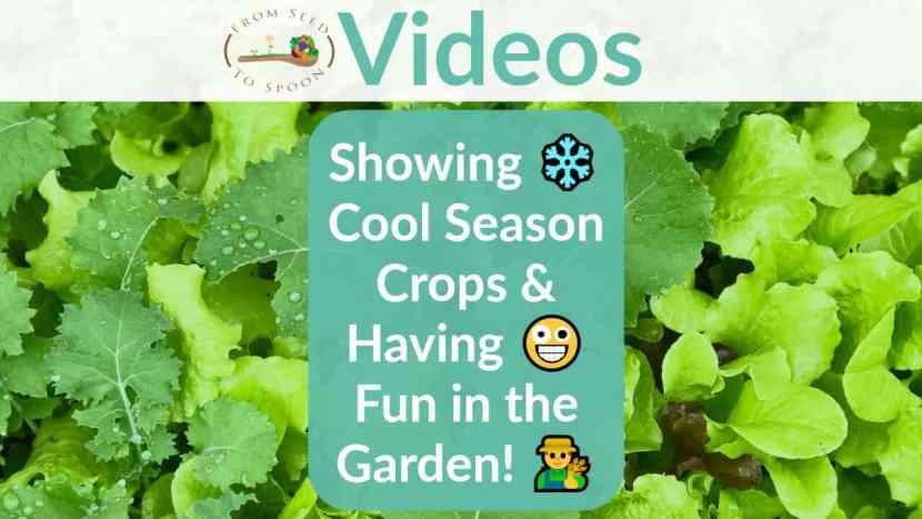 Having fun in the garden blog post