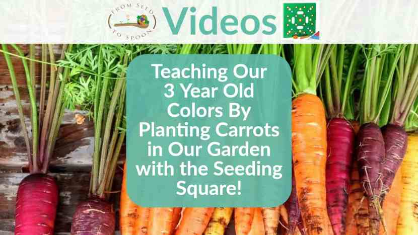 Seeding Square video