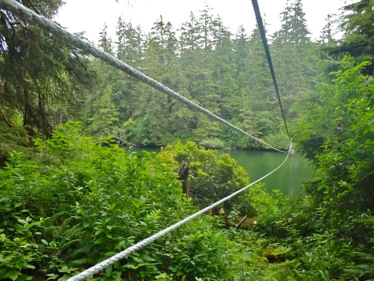 Hiking the West Coast Trail solo