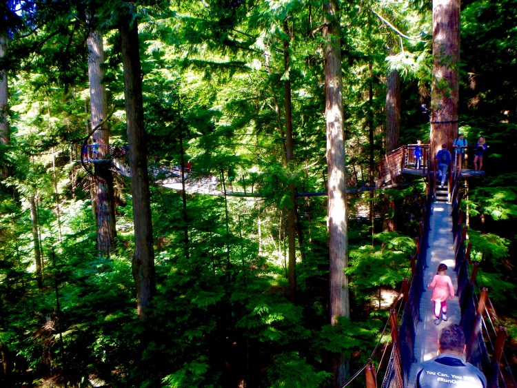 what is there to do at Capilano Suspension Bridge Park