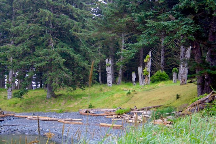 best places to see aboriginal totems in Haida Gwaii