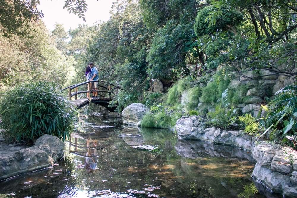 three days in Austin what to do - zilker park