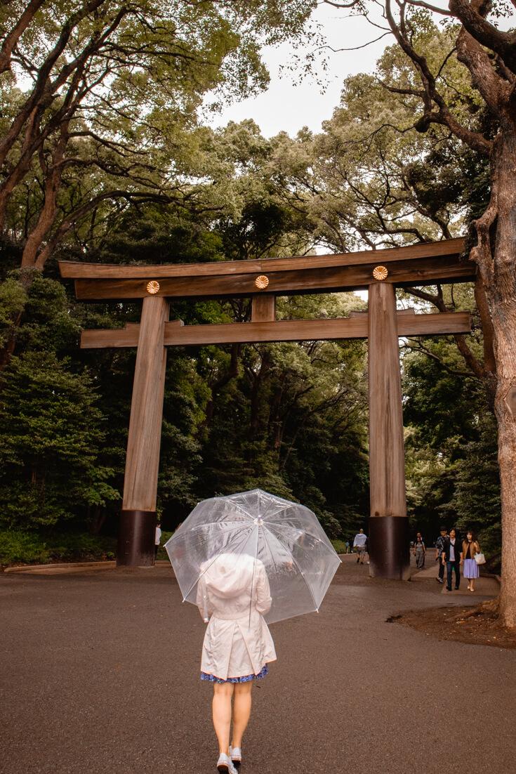 Meiji Shrine in harajuku tokyo