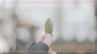 LINKS-book