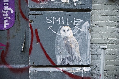owl street art found in nyc