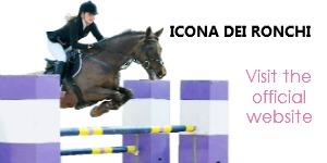 banner_icona_dei_ronchi_by_gaia_vincenzi_1