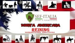 reining-6f15f7fe