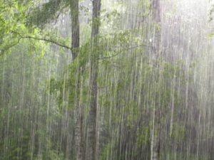 torrential-rain