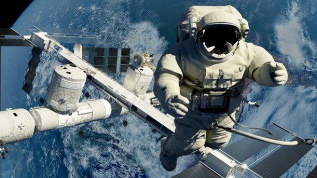 NASA начало уникальный эксперимент. Фото: Elitefon.ru