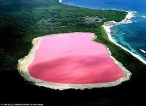 Un lago rosa nel parco nazionale di Cape Arid in Australia