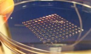 La stampante 3D per produrre organi umani