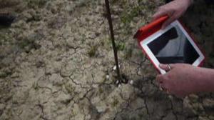 """Sconvolgimento geologico, in provincia di Mantova la terra """"ribolle"""""""