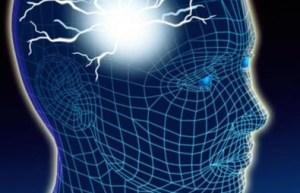 """Scoperta del Cnr di Bologna: il microchip che fa """"parlare"""" i neuroni"""
