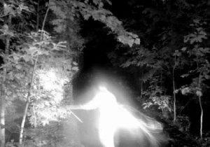 Misteriosa figura compare nello State Parks in Georgia