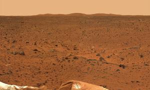 Una lucertola su Marte fotografata da Curiosity?