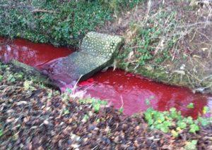 Fiume diventa improvvisamente rosso
