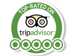 trip advisor bradenton beach segs by the sea segway anna maria island