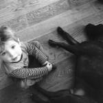 Seguro Responsabilidad Civil Intervención Asistida con Animales