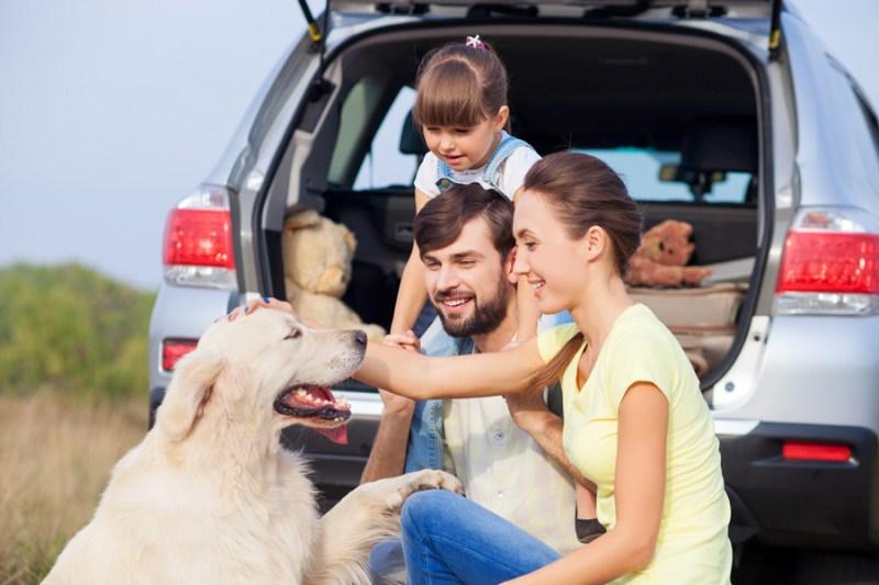 Conoce las 8 principales causas de un accidente vial