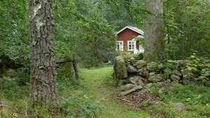 Schwedisches Haus im Wald
