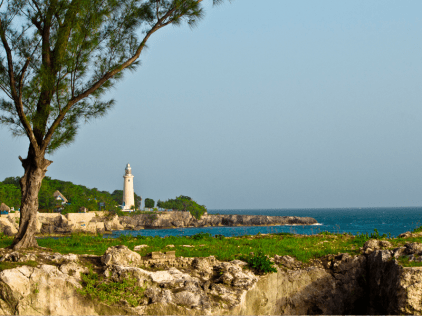 View From Negril