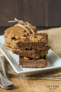 speculoos nutella bars | seitanismymotor.com