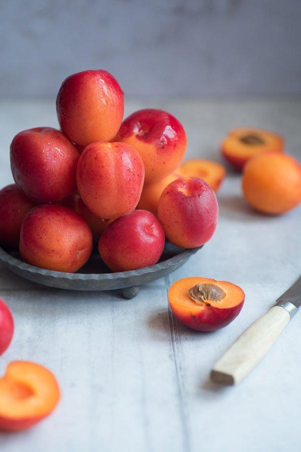 rote Aprikosen auf einem Teller | red apricots on a plate