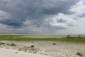 Etosha Salt Pan with storm in the distance