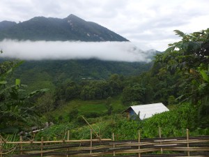 Low clouds ring the mountain in the distance. Green Farm land and rice terrace in the foreground