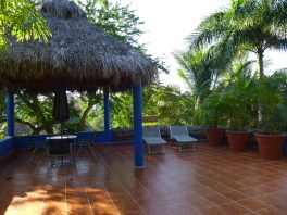 view of grass roofed palapa on roof top patio
