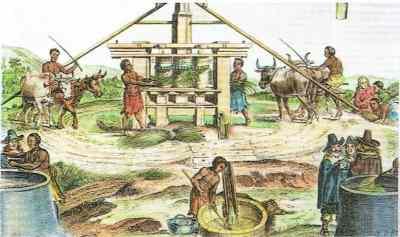 奴隷制プランテーションと奴隷貿易