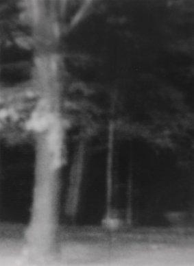 Nullmeridian-076-Tiergarten-1