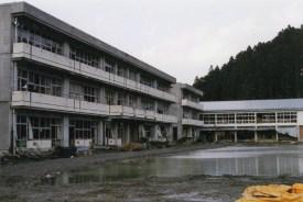 Tohoku-11