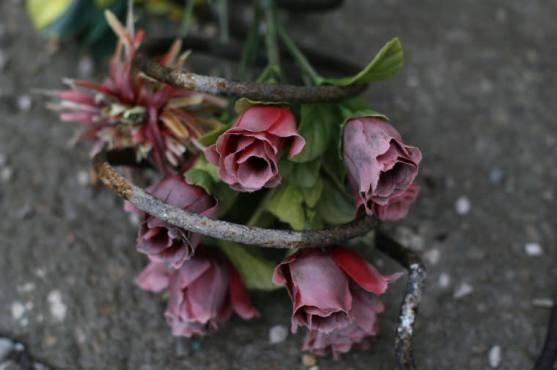 Venedig Blumen Ausw01