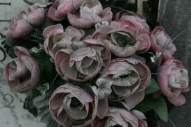 Venedig Blumen Ausw02