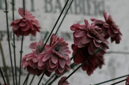 Venedig Blumen Ausw11