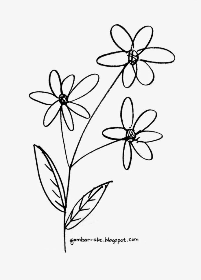 Lukisan Bunga Sederhana Pensil