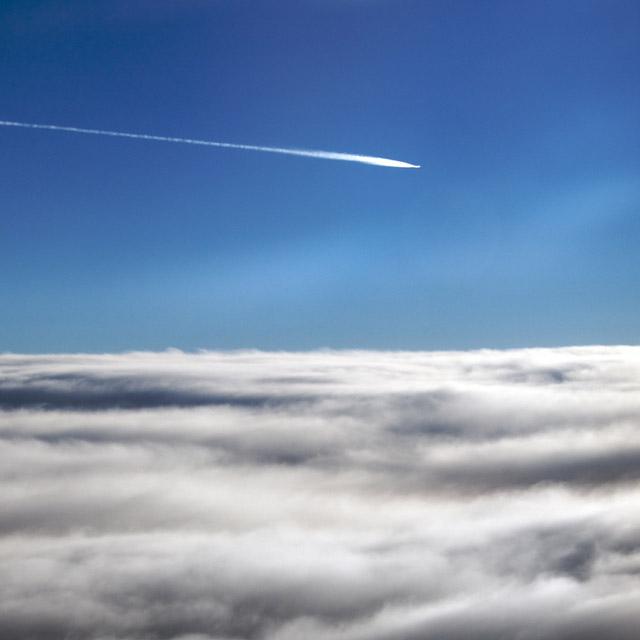 Fly homeward, angel.jpg