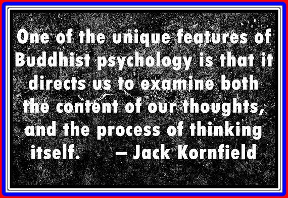 In Buddhist psychology we are taught to examine all aspects of our thought.