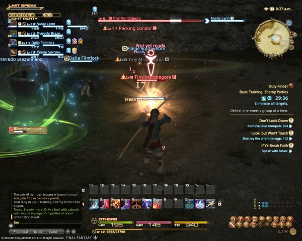 Final Fantasy XIV A Realm Reborn Duty Challenge