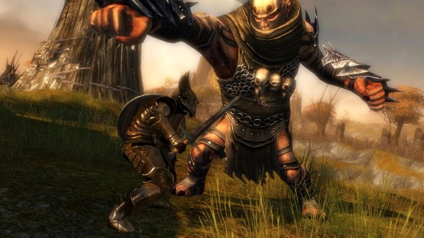 Guild Wars 2 - Warrior Screenshot