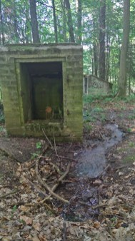 Streaming water at mysterious buildings in a forest