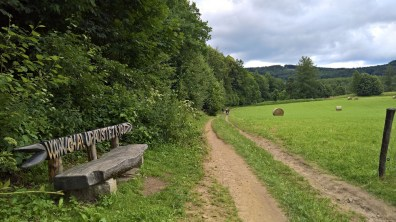 Rychleby trail + red mark