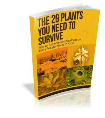 29-plants-cover-3d no author