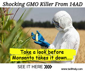 The Shocking GMO Killer